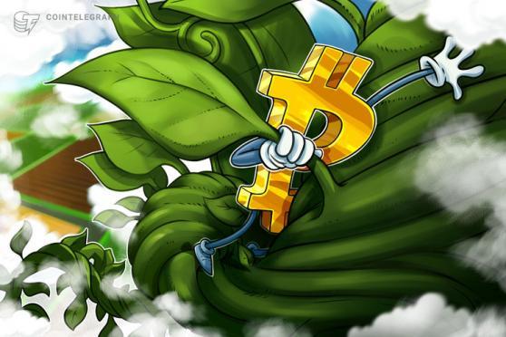 Bitcoin klettert auf über 39.000 US-Dollar: Kommentare vom SEC-Vorsitzenden geben Kurs einen Schub