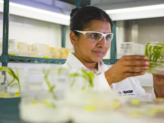 BASF-Aktie: Darum fällt der Chemie-Gigant im Wettbewerb immer weiter zurück